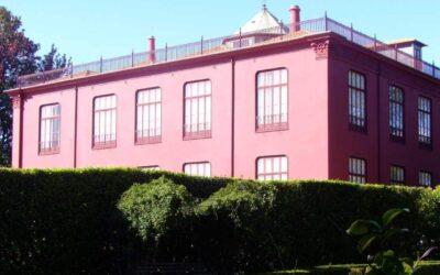 Obras no Jardim Botânico, no Porto, com intervenções da Prospectiva
